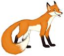 foxtiny
