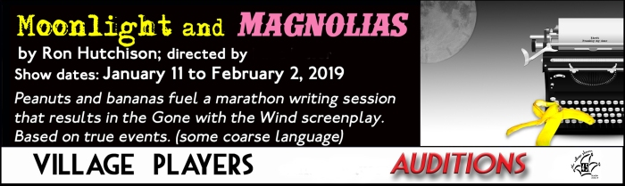 """""""village playhouse toronto"""" """"village playhouse"""" """"village players"""" """"bloor west"""" theatre theater Runnymede """"Moonlight and Magnolias"""" """"Ron Hutchison"""" """"Mike Hiller"""" """"Michael Hiller"""" auditions"""